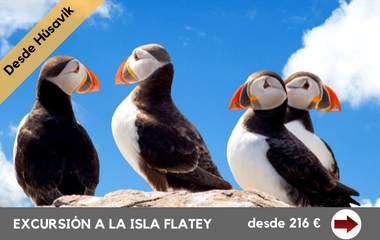 excursion-a-la-isla-flatey