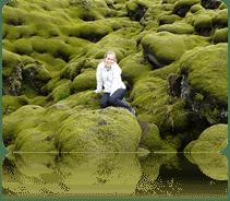 flora islandesa